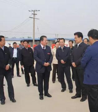 中央政治局委员张春贤视察红星美羚精准扶贫奶山羊养殖基地