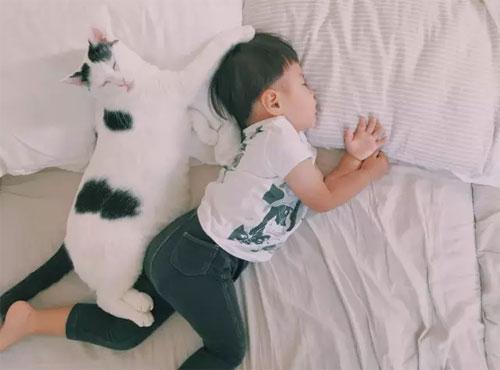 每当感到疲倦的时候,看见可爱的萌宝宝和萌宠物,所有的疲惫都会烟消