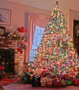 2016年主要市场圣诞销情