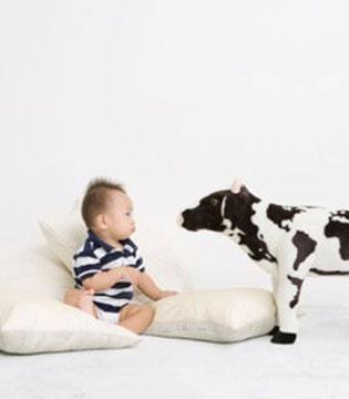 二孩时代 母婴市场扩容 奶粉行业最先获益