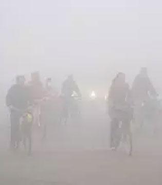 雾霾天来了 羊奶教你润肺止渴