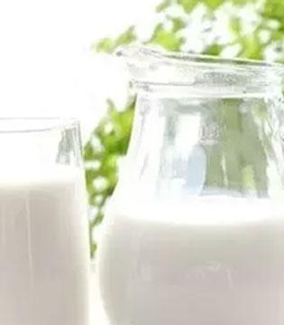 酸奶和牛奶谁更营养 自制酸奶PK市售酸奶