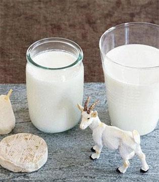 选择羊奶就是选择健康  羊奶营养又护肤