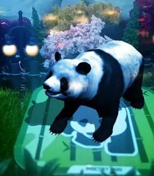 每日枕边故事  不睡觉的小熊猫