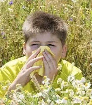 春季宝宝易过敏  7种过敏源一定要远离