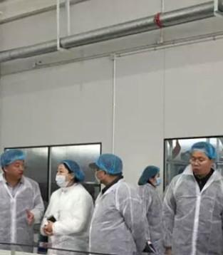 百跃古象智能工厂生产试运行全面启动