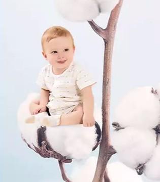 丽婴房直播预告 优质的棉只为更珍贵的你