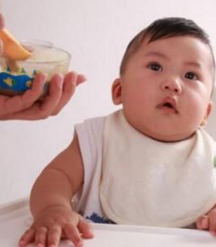 新手爸妈爱问 宝宝的辅食吃得越多越好