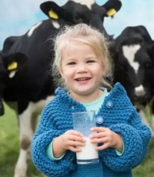 中国婴儿奶粉潜在市场达190亿 中国乳制品工业协会召开