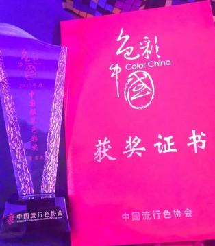 """儿童品牌典范―Balabala荣获第九届""""色彩中国""""年度大奖"""