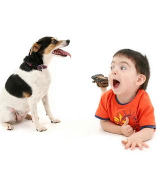 孩子为何会害怕动物 如何帮孩子克服怕动物的心理