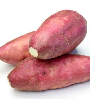宝宝吃红薯可促进智力发展 宝宝吃红薯做法