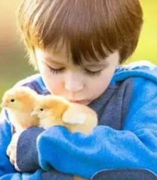 感恩节 培养一个懂得感恩的孩子 父母应该这么做