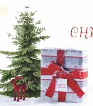 福利 圣诞节快到了 Sunroo阳光鼠为你准备了……