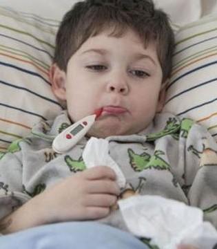 哪些宝宝更易被发烧困扰 如何提高宝宝的抵抗力
