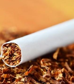 百万元假烟被销毁 烟草的危害不容小视