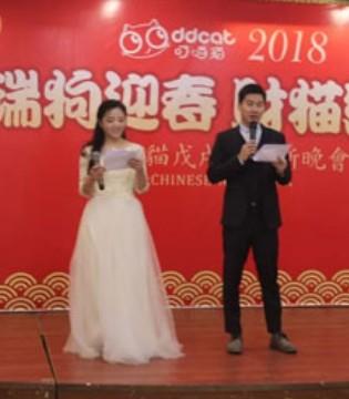 瑞狗迎春 财猫纳福 叮当猫公司2018年会精彩无限
