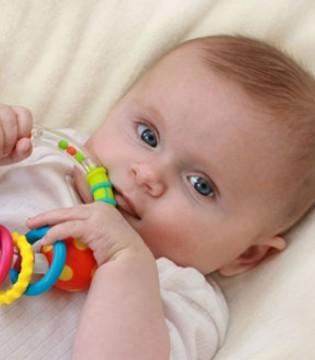 五大营养素 助力宝宝脑部成长发育