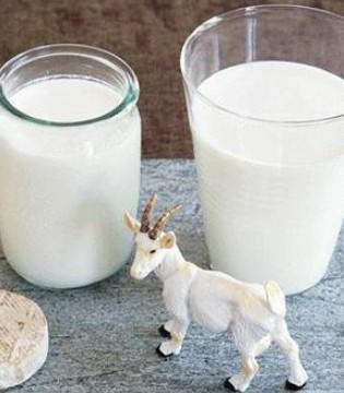 去年逾千个婴儿奶粉配方获注册 乳企向有机和羊奶粉转型