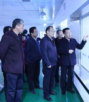 陕西省畜牧局局长杨黎旭一行莅临金牛乳业调研奶山羊产业