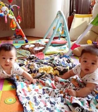 范玮琪晒双胞胎儿子 多彩儿童房吸睛