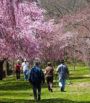 春季户外活动好处多 然而春季溜娃要谨慎 不然孩子遭罪