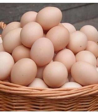吃高钙蛋等的营养蛋 到底好不好 应该怎么吃呢
