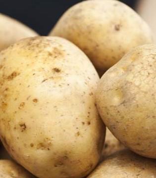 食用土豆时要注意什么? 土豆食用也有禁忌