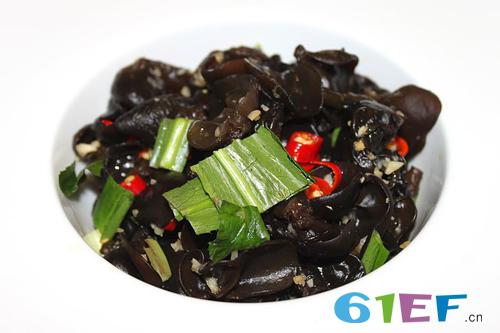 严防食物中毒:7岁女童食用黑木耳中毒昏迷至今!