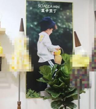 夏卡豆丁2019春夏新品发布会圆满落幕 全国巡展即将开启