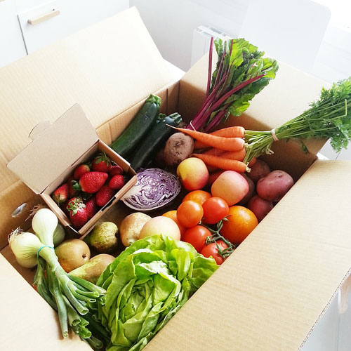 孩子讨厌吃蔬菜怎么办?家长可以这样做……
