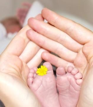 宝宝的小秘密:十个非常可爱的地方