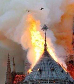 紧跟Gucci LVMH老板捐2亿欧元修复巴黎圣母院