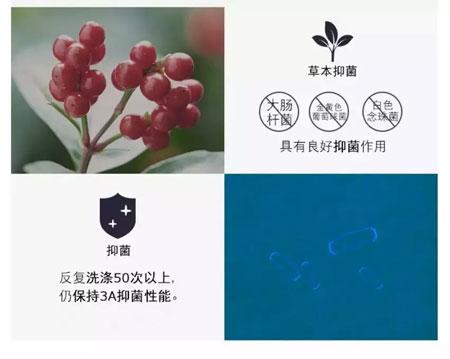 """藤之木工房 秋季抗菌必buy""""保鲜膜"""""""