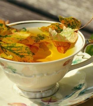 懒人焖饭 一个电饭煲便可做出一顿美味晚餐