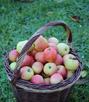 营养丰富的苹果 怎样吃价值会更高?