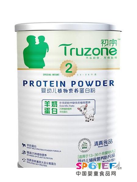 初宗婴儿食品婴幼儿营养蛋白粉2段