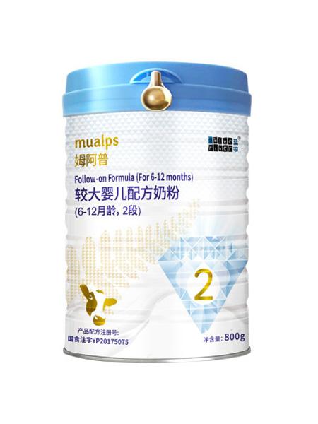 蓝河婴儿食品蓝河姆阿普牛奶粉2段较大婴儿牛奶粉800g 新西兰进口